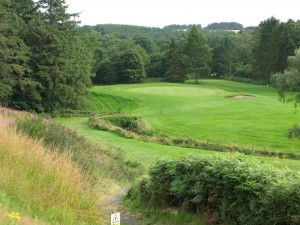 12th tee Letham
