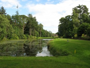 "8th at Letham - ""Augusta of Angus"""